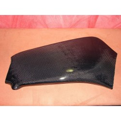 Kawasaki ZX 6 09-10 Reinforced carbon rear wheel protector